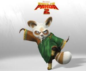Master Shifu is the coach of all the great kung fu fighters in the country. puzzle