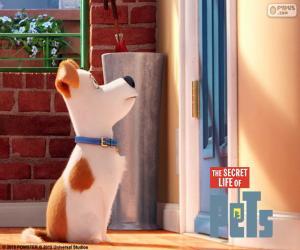 Max in front of the door puzzle