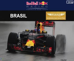 Max Verstappen, 2016 Brazilian GP puzzle