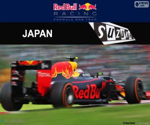 Max Verstappen, 2016 Japanese GP puzzle