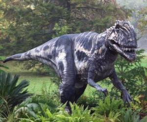 Megalosaurus was a bipedal predator about 9 meters long and about a ton weight puzzle