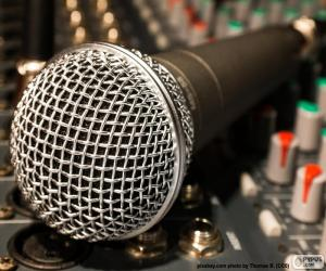 Microphone and mixer puzzle