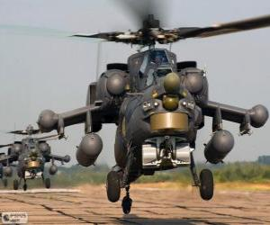 Military helicopter puzzle