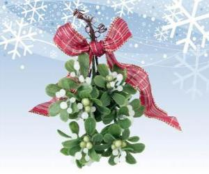 Mistletoe branch with berries puzzle