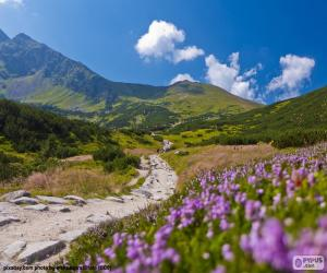 Mountain landscape puzzle