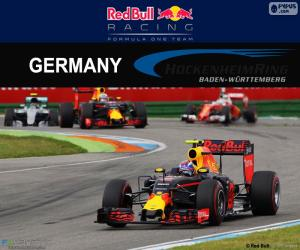 M.Verstappen, 2016 German Grand Prix puzzle