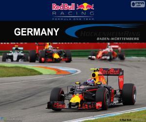 M.Verstappen, 2016 German Grand Prix puzzle