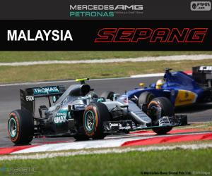 N. Rosberg, Malaysian GP 2016 puzzle