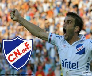 Nacional de Football, champion 14-15 puzzle