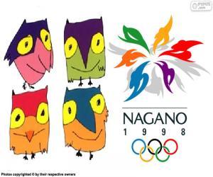 Nagano 1998 Winter Olympics puzzle
