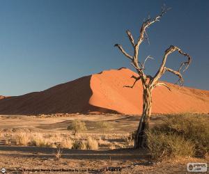 Namib Desert, Namibia puzzle