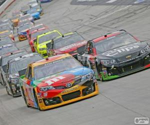 NASCAR Sprint Cup Series puzzle