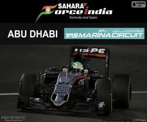 Nico Hülkenberg, 2016 Abu Dhabi GP puzzle