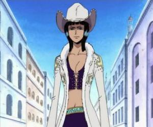 Nico Robin, archaeologist of the crew of The Straw Hat Pirates puzzle