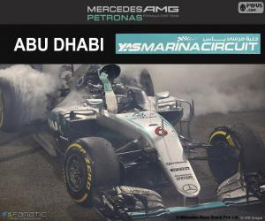 Nico Rosberg, 2016 Abu Dhabi GP puzzle