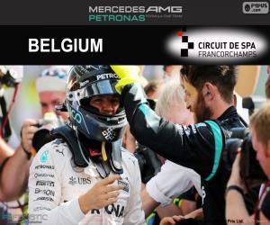 Nico Rosberg, 2016 Belgian Grand Prix puzzle