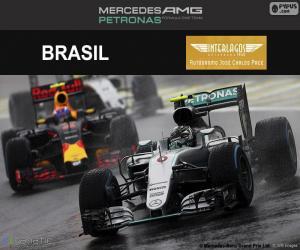 Nico Rosberg, 2016 Brazilian Grand Prix puzzle