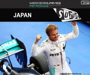 Nico Rosberg, 2016 Japanese GP puzzle