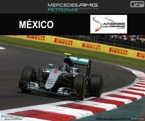 Nico Rosberg, 2016 Mexican Grand Prix puzzle