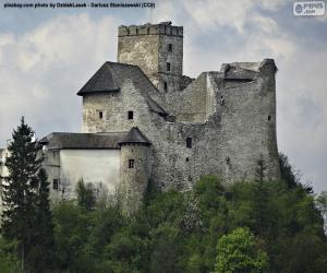 Niedzica Castle puzzle