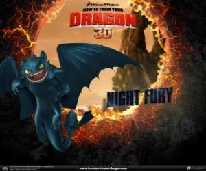 Night Fury, the rarest and most intelligent dragon puzzle