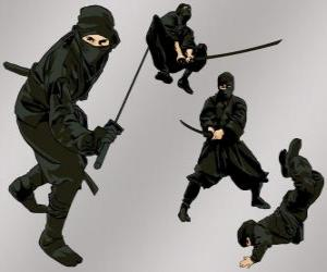 Ninja in various positions puzzle