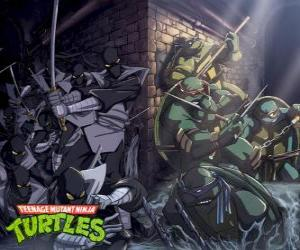 Ninja Turtles in action puzzle
