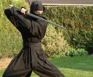 Ninja warrior and the fight with the katana puzzle