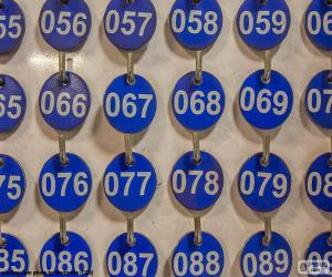 Numbered plates puzzle