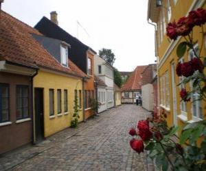 Odense, Denmark puzzle