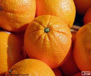 Oranges puzzle
