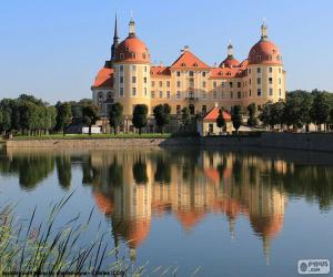 Palace of Moritzburg, Germany puzzle