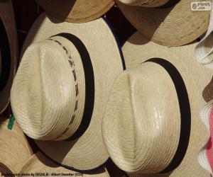 Panama Hat puzzle