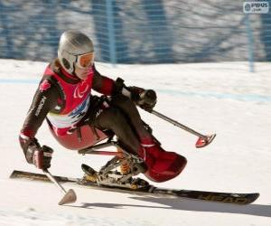 Paralympic skier in the slalom competition puzzle