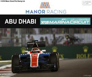 Pascal Wehrlein, 2016 Abu Dhabi GP puzzle