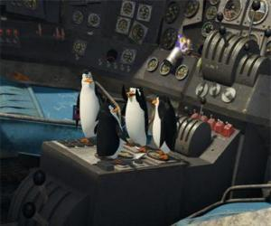 Penguins repaired an old crashed plane puzzle