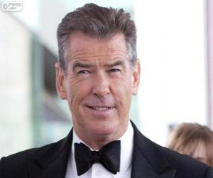 Pierce Brosnan puzzle