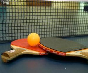 Ping-pong rackets and ball puzzle