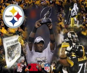Pittsburgh Steelers AFC champion 2010-11 puzzle