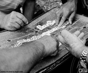 Playing dominoes puzzle