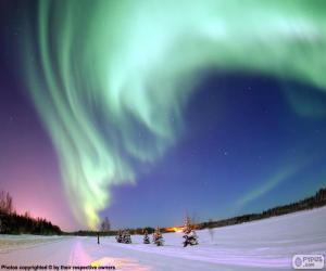 Polar Aurora puzzle