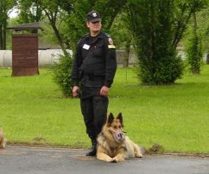 Policeman or police officer with his police dog puzzle