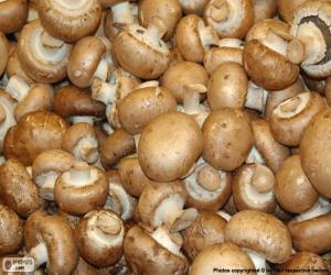 Portobello mushroom puzzle