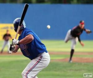 Professional baseball player, the batter with the bat held high puzzle