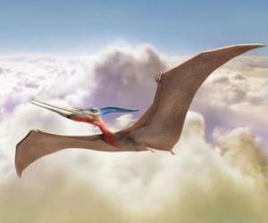 Pterodactyl flying puzzle