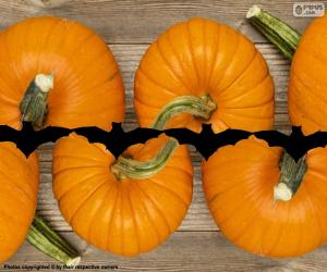 Pumpkins for Halloween puzzle