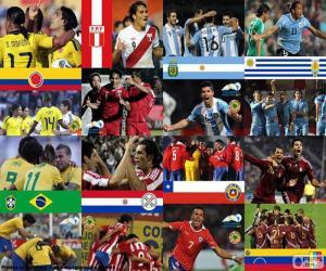 Quarter-finals, Argentina 2011 puzzle