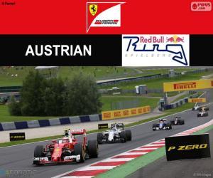 Räikkönen, 2016 Austrian Grand Prix puzzle