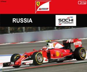 Räikkönen, 2016 Russian Grand Prix puzzle