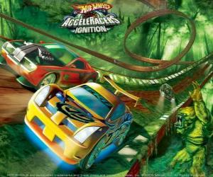 Racing cars at the Hot Wheels circuit puzzle